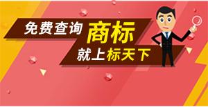 2016全球域名行业峰会落幕,标天下载誉而归!!